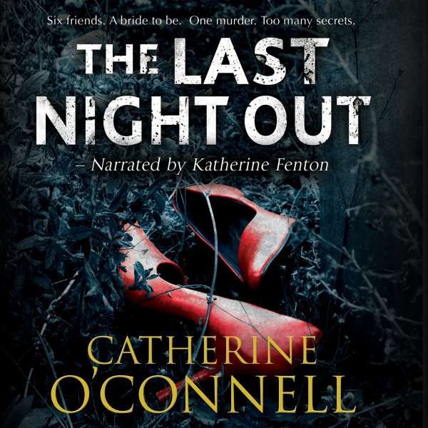 The Last Night Out (Unabridged) von Catherine O'Connell